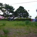 ▲キャンプ場の朝